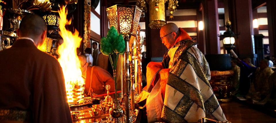 shrine, hatsumode